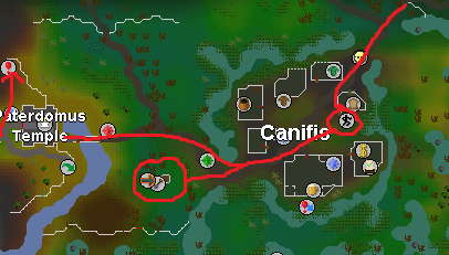 OSRS Canifis Agility Map