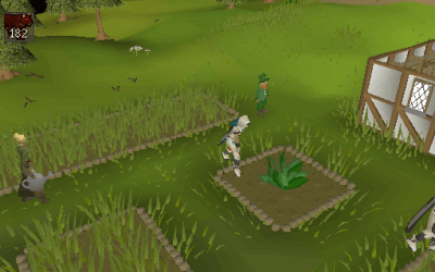 Herb Run OSRS Farming Guide (All Herb Patches!)